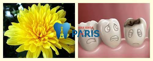 """15 cách chữa sâu răng """"Tại Nhà"""" bằng hoa cúc"""